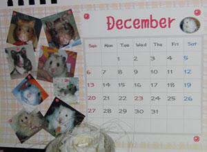 12月はみんな
