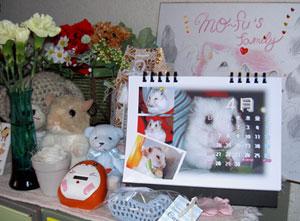 もーちゃんカレンダー