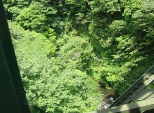 箱根登山列車より撮影