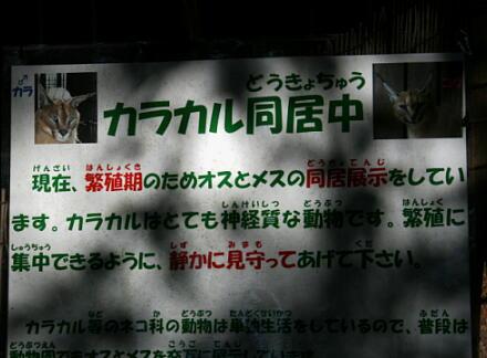 10_30hamura14-24.jpg