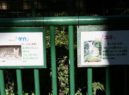 10_30hamura14-50.jpg