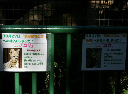 10_30hamura14-51.jpg