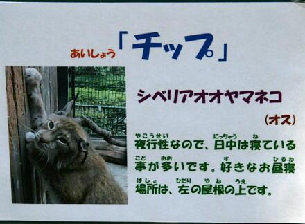 10_30hamura14-9.jpg