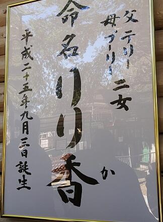 11_17zou13-1.jpg