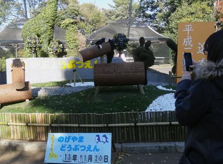 11_23nogeyama13-1.jpg
