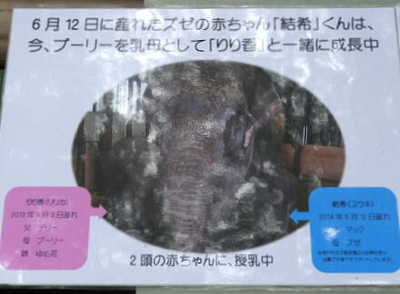 4_14zounokuni14-1.jpg