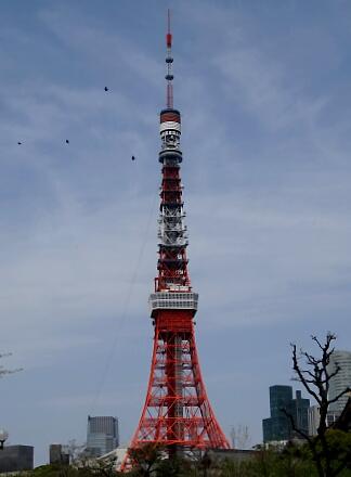 ひさしぶり東京タワー