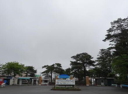 6_17yagiyama14-1.jpg