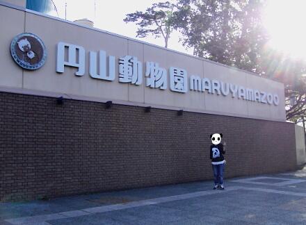 円山動物園!