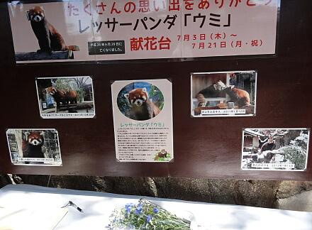7_13nogeyama14-1.jpg