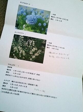 9_21flower13-2.jpg